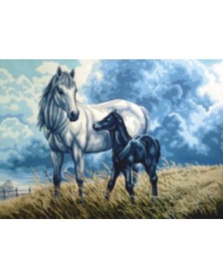 Άλογα στον αγρό