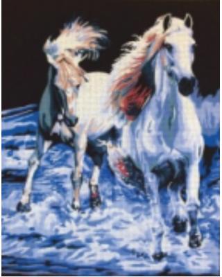 Άλογα στην ακροθαλασσιά